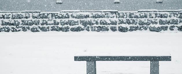 冬のオフパコ